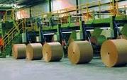 industria-papelera