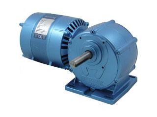 Motorreductores Parvalux    -Motor de Inducción (220/240VAC ,0,5rpm)