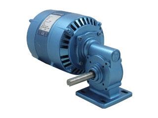 Motoreductores Parvalux    -Motor de Indução (220/380VAC ,456rpm)