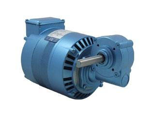 Motoreductores Parvalux    -Motor de Indução (220VAC ,340rpm)