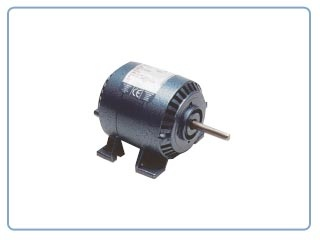 Motores eléctricos Parvalux    -Motor de inducción (220VAC ,)