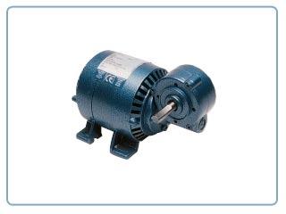 Motorreductores Parvalux    -Motor de inducción (230/250VAC ,20rpm)